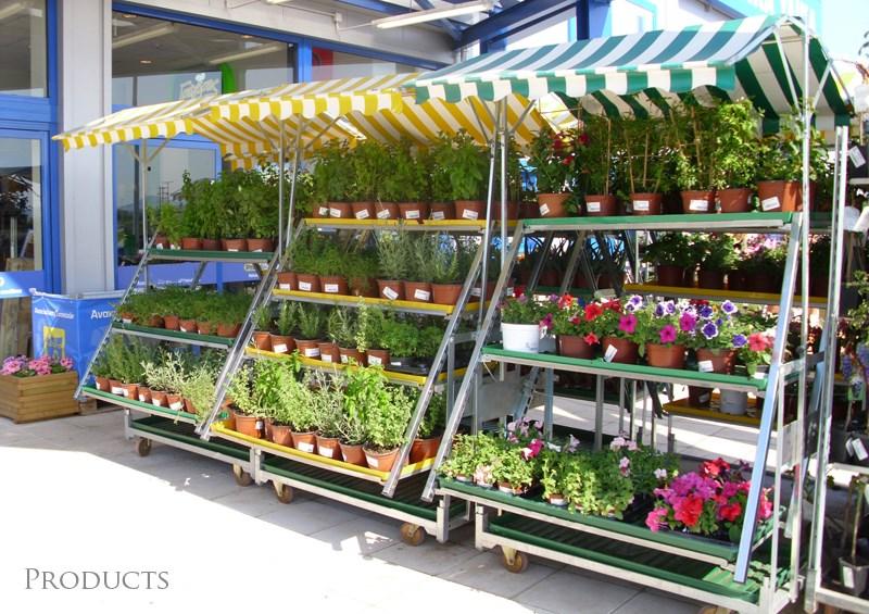 Made 4 diy organizzazione orlandelli for Catalogo piante e fiori